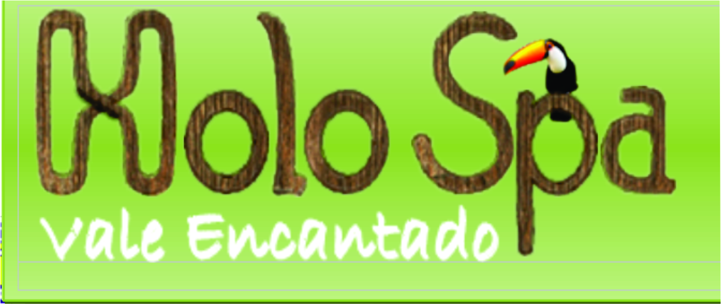LogoHolo